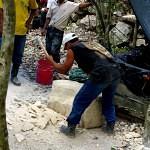 Maya bei der Arbeit