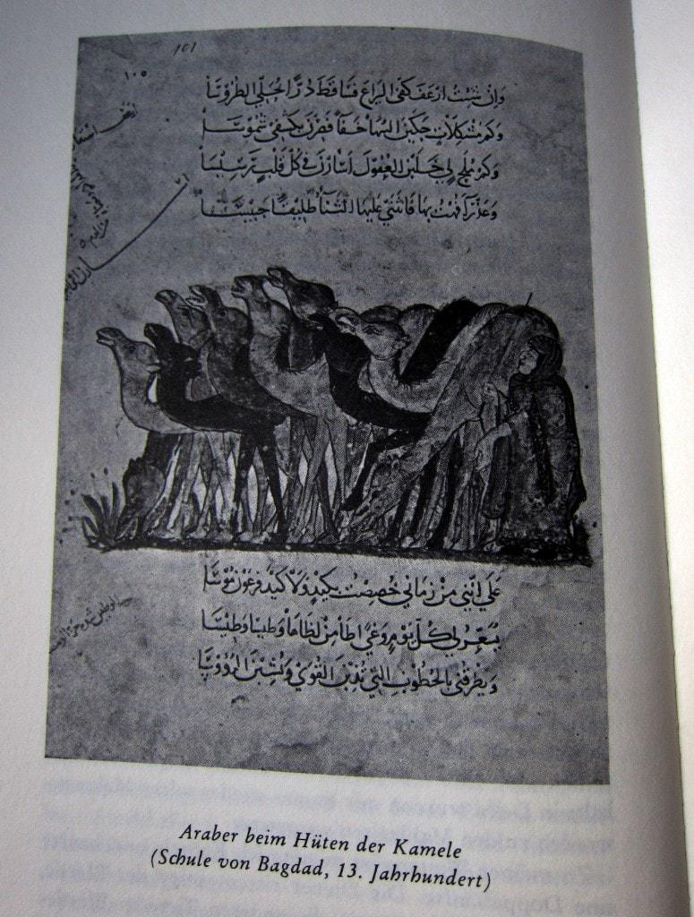 Reisen ans Ende der Welt - Ibn Battuta