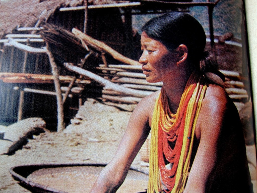Reise zu den Naga - Milada Ganguli