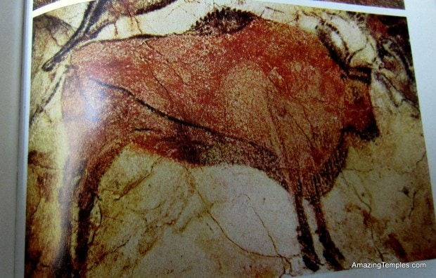 Stehender Bison - Alta Mira - Höhlenmalerei