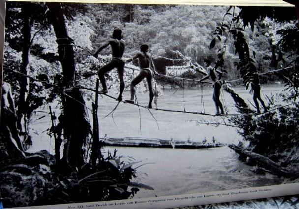 Eingeborene - Neu-Guinea - neue große völkerkunde