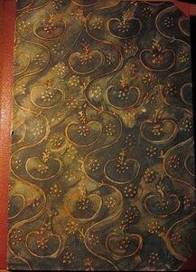 Originalbuch - das Urwaldschiff - Bermann - 1927
