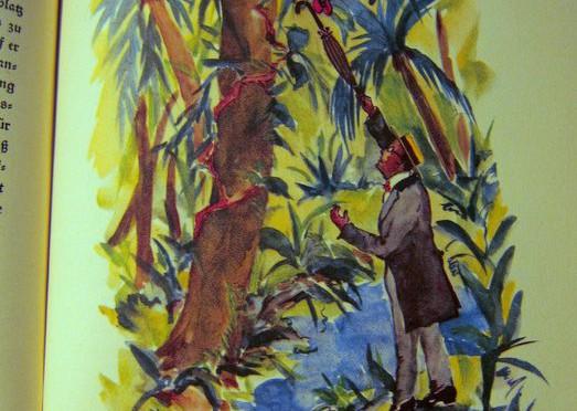 Das Urwaldschiff – Richard Arnold Bermann – eine Fahrt auf dem Amazonenstrom – 1927