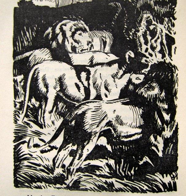 Löwen - Wanderer ohne Ziel - Artur Heye - 1925