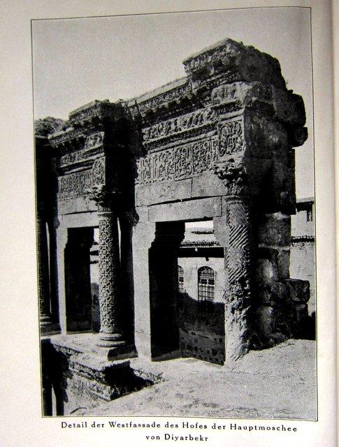 Mosche - Tigrisfahrt - Samuel Guyer