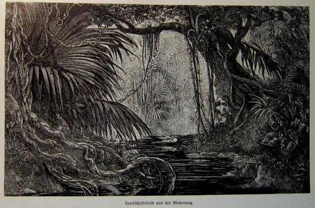 Landschaftsbild aus der Niederung Monolithisches Tor - Francisco Pizarro und die Eroberung von Peru