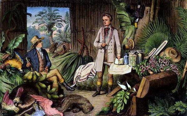 Reise nach Südamerika – Alexander von Humboldt