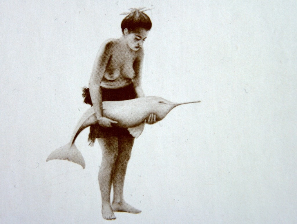 Mädchen mit Flußdelphin - Titelseite von Der Geist in den Wassern