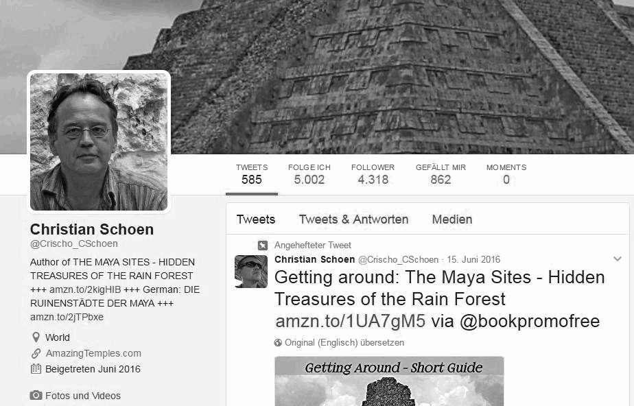 Screenshot - Twitter für Autoren