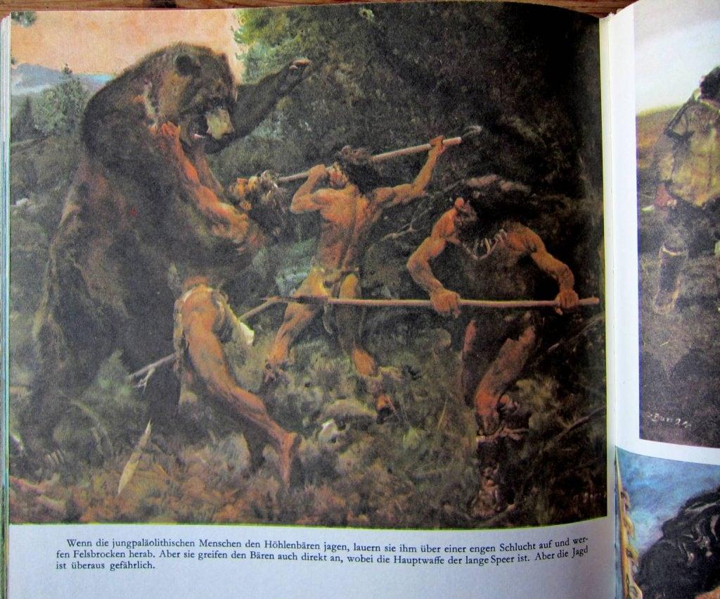 Leben in der Urzeit - Spinar - Busian