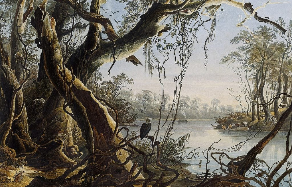 Karl Bodmer [Public domain], via Wikimedia Commons