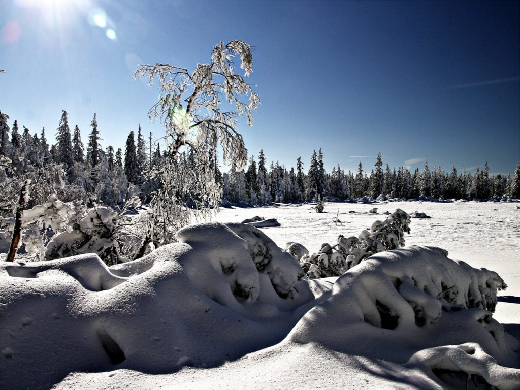 Winter Fünf Lustige Gedichte