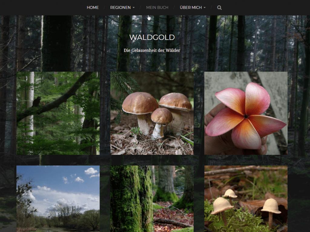 Screenshot von Waldgold.de